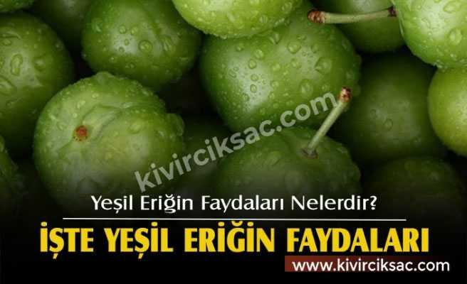 Mucize Meyve Eriğin Faydaları